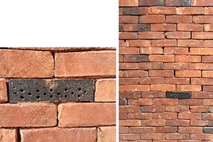 briques à insectes sur Covent Garden