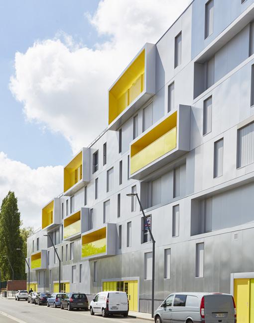 Le Mahonia, Lille